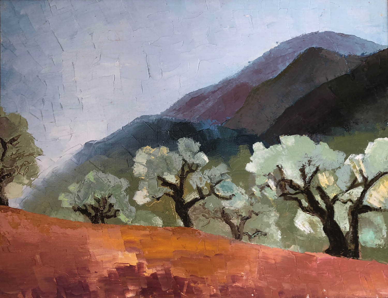 Olive trees in Villepasson