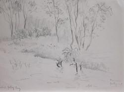 Yalong Bay creek