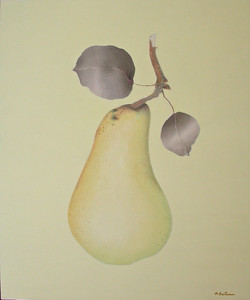 The priest's pear