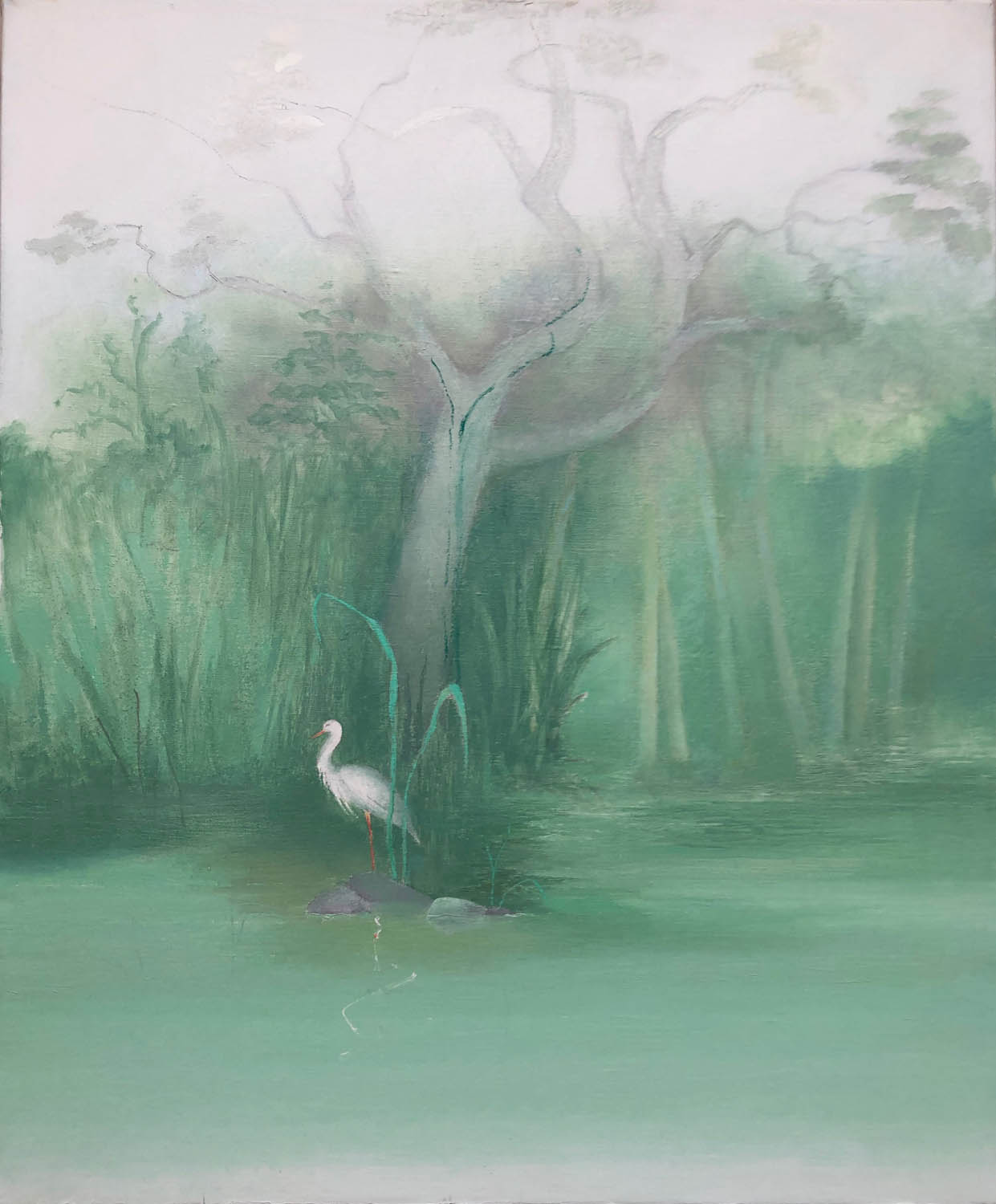 Egret in Mexico