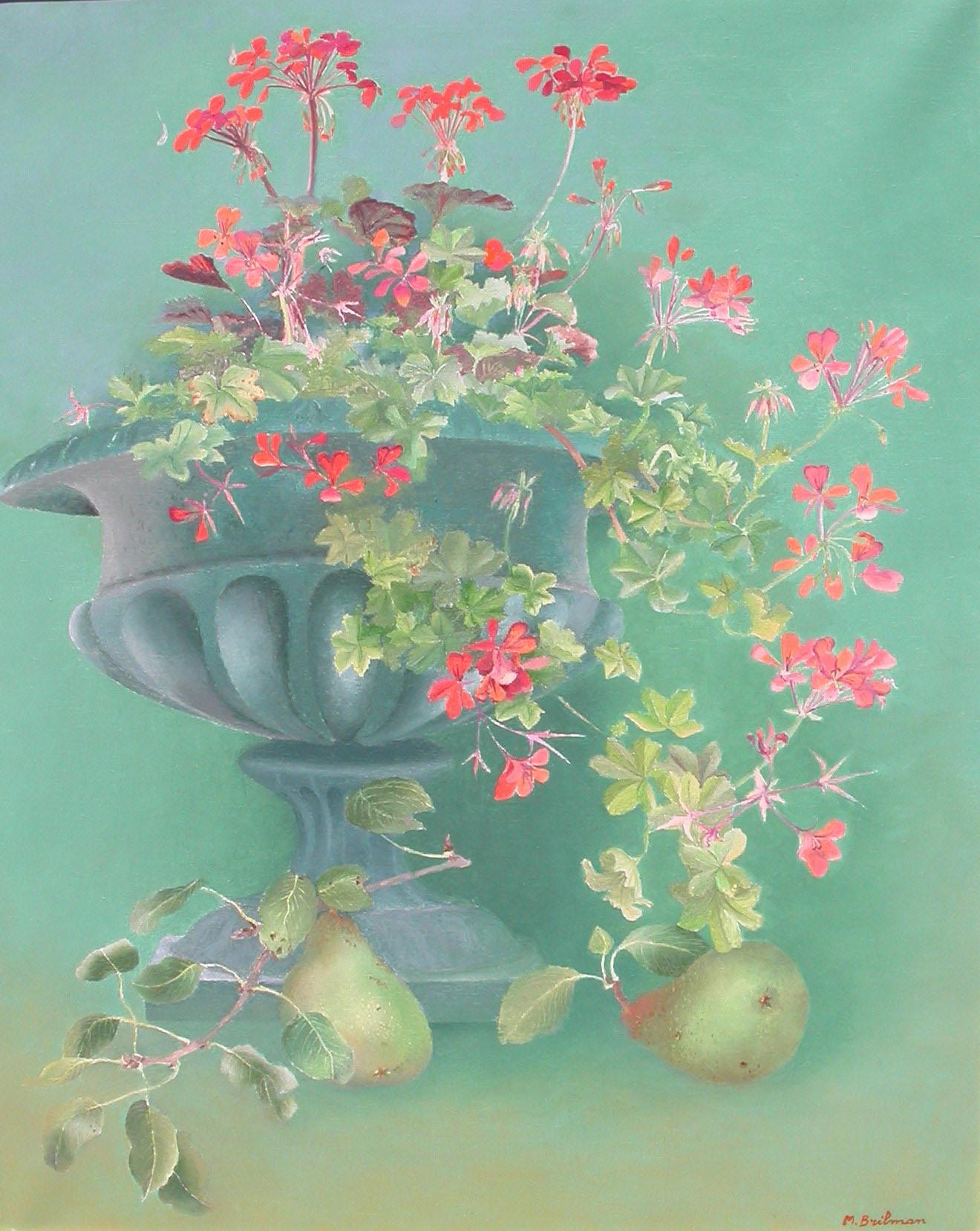 Les geraniums