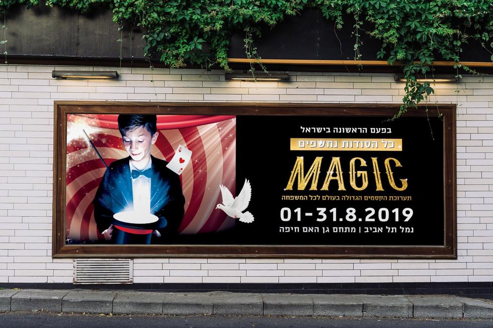 magic_7-min.jpg