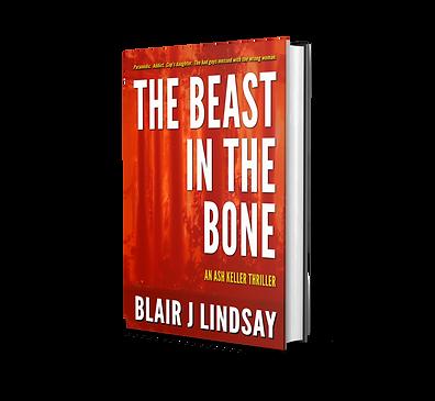 Beast cover mockup.png