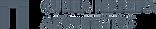 01 - Logo Principal - Pantone 431C - RGB
