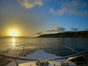 Top 3 Boat Tours in the Azores