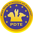 PDTE Logo.png