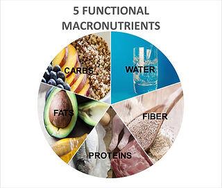 Macronutrient Pie Chart- Image.jpg