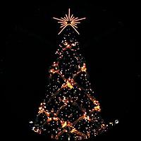0ボタン_丸の内クリスマス2.png