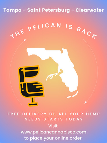 Free Local Delivery In Tampa Bay!