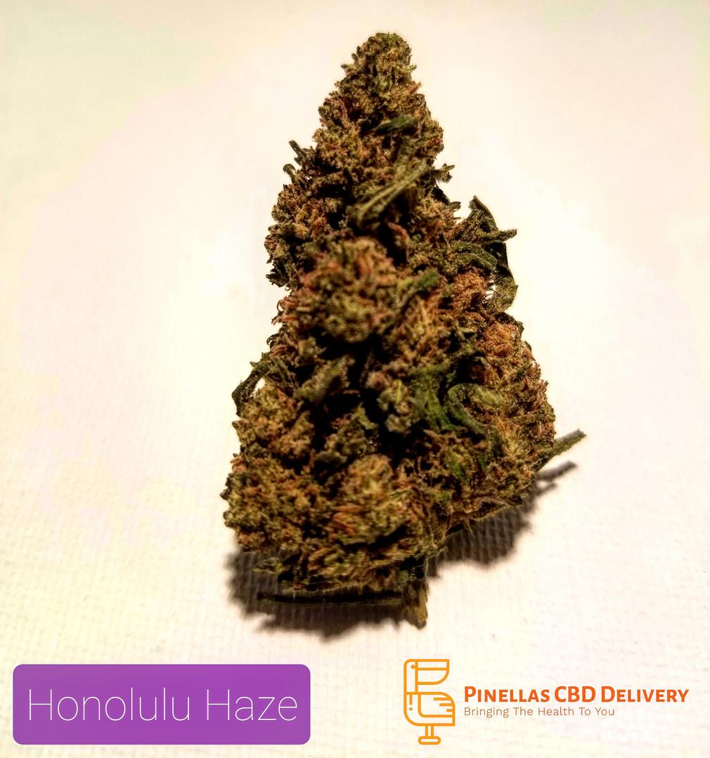 Honolulu Haze Hemp Flower
