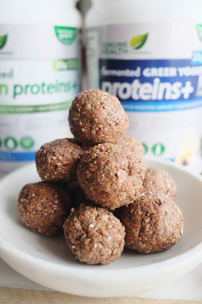 Fermented Superfood Protein Bites