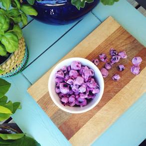 Greek Yogurt Frozen Blueberries