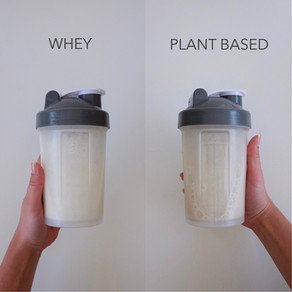 Whey vs. Plant Based Protein