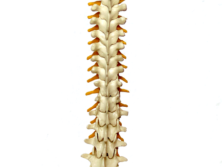 Have you had Lower Back Pain for less than 6 months?