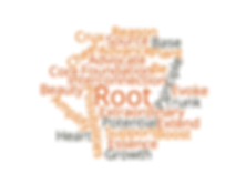 wordcloud_root.png