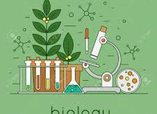 Honors Biology