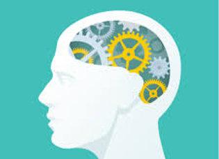 Psychology (1 Semester – Offered Both Semesters)