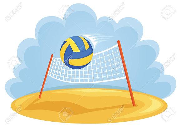 Net Sports (Volleyball, Tennis, Badminton)