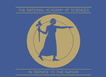 Internship - (NAF: National Academy of Finance)