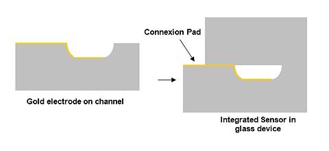 Integrated sensor LabInGlass