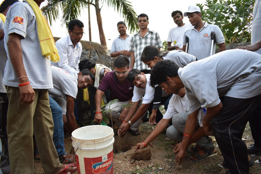 Sambalpur - Tree Plantation