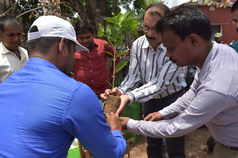 Bhadrak - Tree Plantation