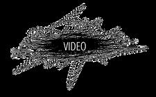 video%2520vacio_edited_edited.png