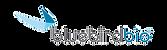 340-3402233_bluebird-bluebird-bio-logo-png-clipart_edited.png