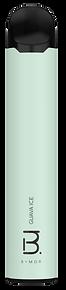 C001-bmor-v.917-2.121.png