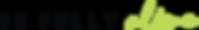 BeFullyAlive Color_Logo_W_BGD_Tag_B.png