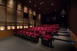 WILLIAM FOX THEATER - 53 Seats