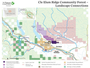 Community Forest on Cle Elum Ridge Receives State Funding