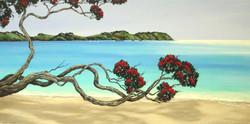 Onetangi Beach 1