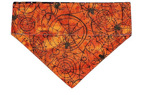 Lexi - Spider Webs on Orange
