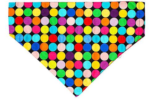 Benji - Rainbow Polka Dots