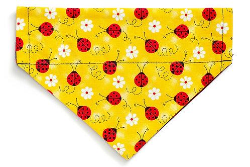 Riley - Ladybugs on Yellow