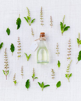 plant-white-leaf-flower-aroma-pattern-12