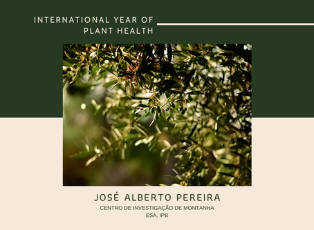 Lectures to commemorate the International Year of Plant Health