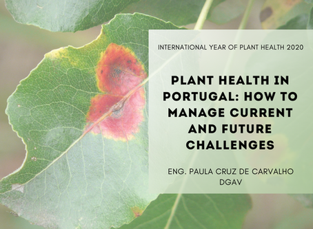 IYPH2020 MARCH'S LECTURE: PLANT HEALTH IN PORTUGAL