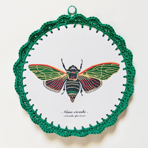 Gian Cicada . Illustration au crochet