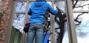 local window cleaning.jpg