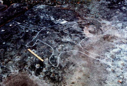 A pictograph possibly depicting a Hawkesbury River monster