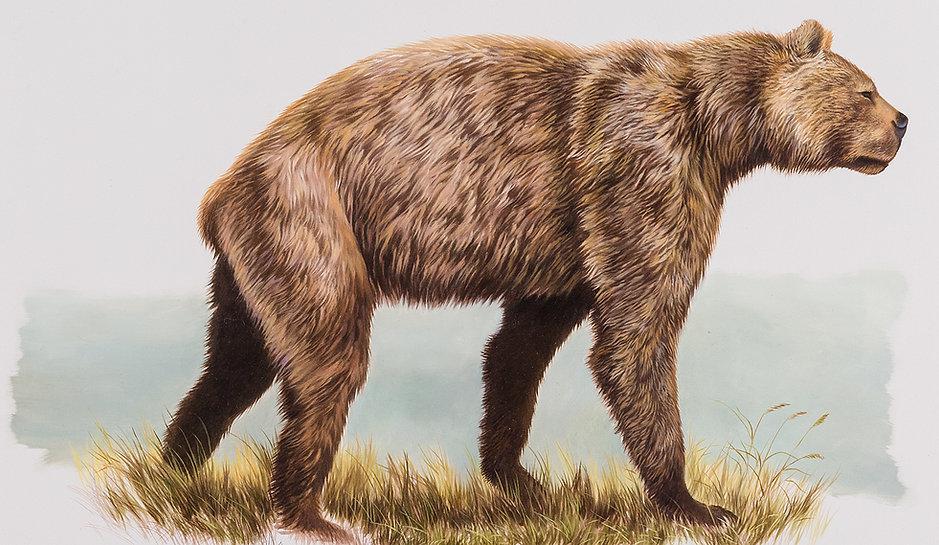 Giant-Short-faced-Bear-banner.jpg.pagesp