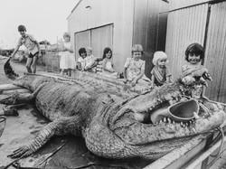 Sweetheart's corpse being taken to Darwin