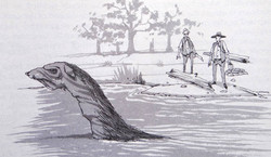 An illustration based off of a 19th century sighting (C. David Rowe)