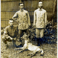 The alleged Honshu wolf killed in 1910