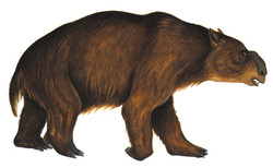 An illustration of a diprotodon