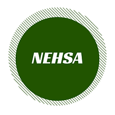 logomarca nehsa 2020.png