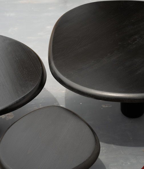 Shroom Tables - LBH1671-Edit.jpg