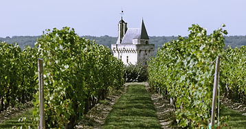 chateau_chinon_ccrtcentrevaldeloire.jpg